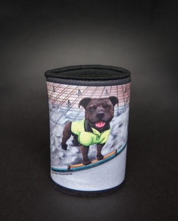 Staffordshire Bull Terrier Concreting